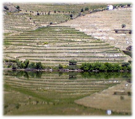 River Douro, Portugal. Copyright © 2012 Trelawny Bond-Taylor